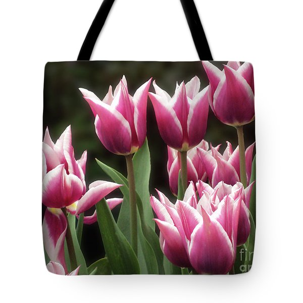 Tulips Bed  Tote Bag
