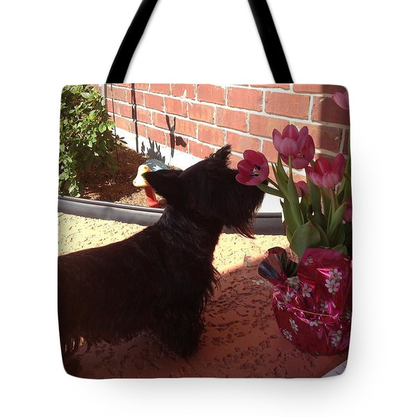Tote Bag featuring the photograph Tulips by Diane Ferguson