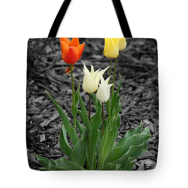 Tote Bag featuring the photograph Tulips by E B Schmidt