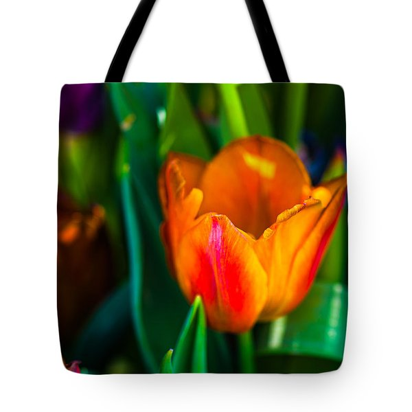 Tote Bag featuring the photograph Tulips Enchanting 44 by Alexander Senin