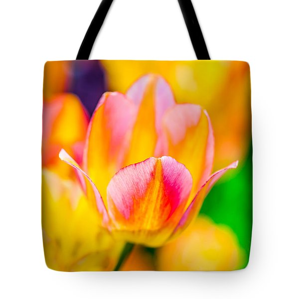 Tote Bag featuring the photograph Tulips Enchanting 48 by Alexander Senin