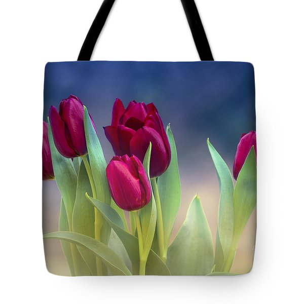 Tulips For Spring Tote Bag by Rima Biswas