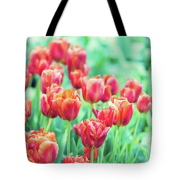 Tulips In Amsterdam Tote Bag