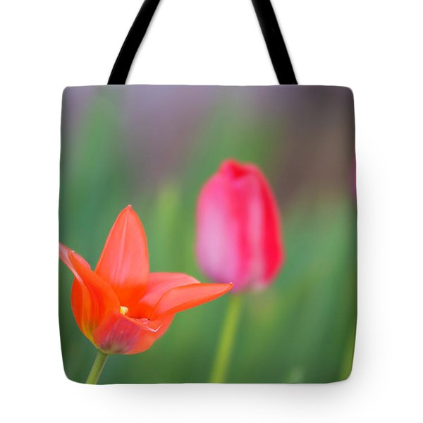 Tulips In My Garden Tote Bag by Rainer Kersten