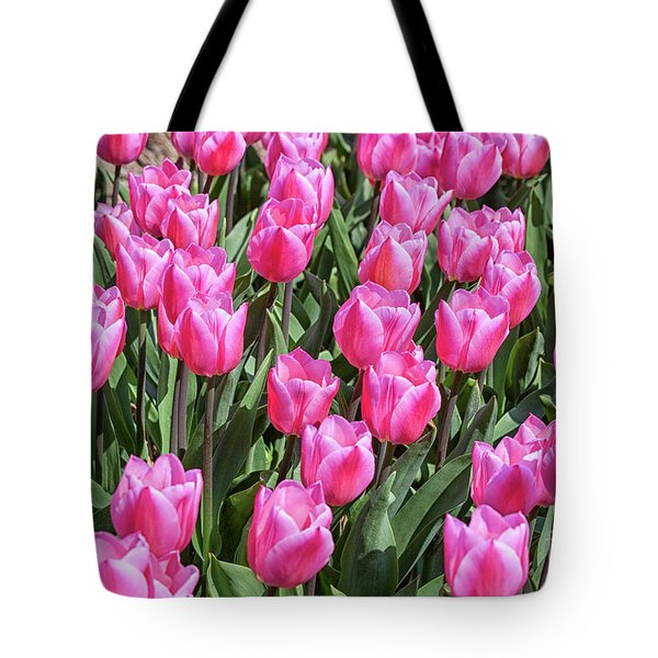 Tote Bag featuring the photograph Tulips In Pink Color by Patricia Hofmeester