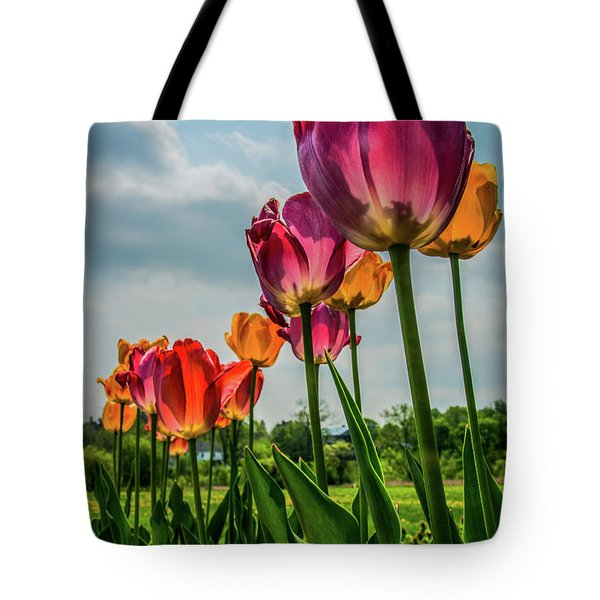 Tulips In The Spring Tote Bag by Jane Axman