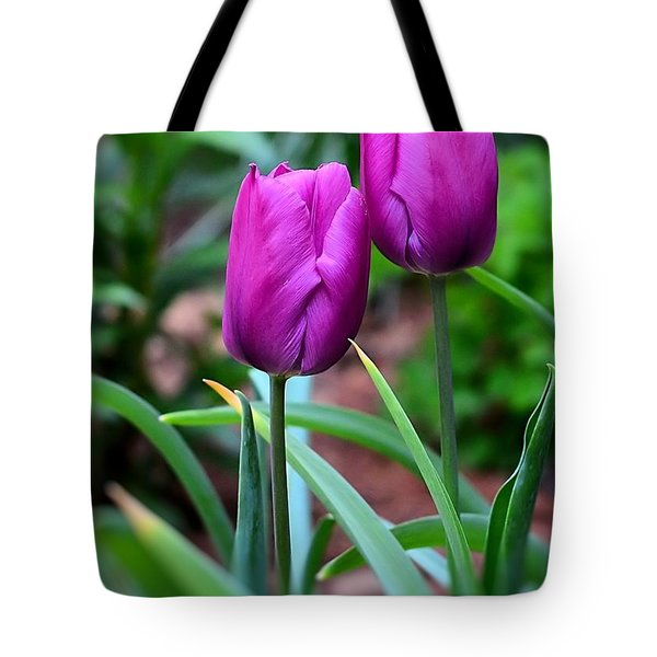 Tulips Tote Bag by Kathy Eickenberg
