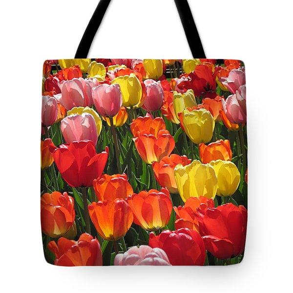 Tulips Like Sunlight Tote Bag