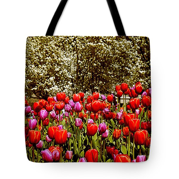Tulips Tote Bag by Milena Ilieva