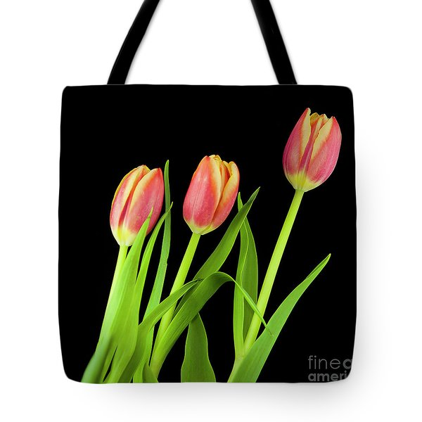 Tote Bag featuring the photograph Tulips On Black by Michael D Miller