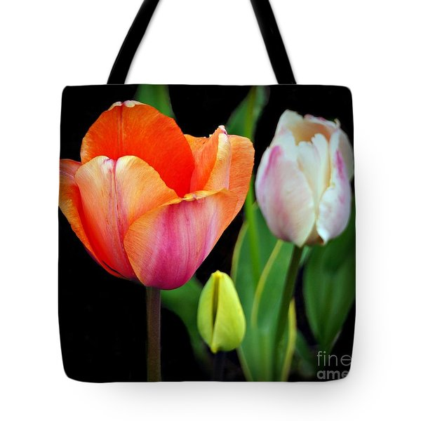 Tote Bag featuring the photograph Tulips On Black by Patricia Strand