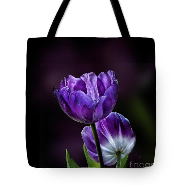 Tulips Tote Bag by Shirley Mangini