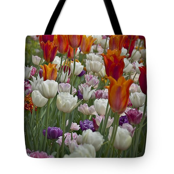 Tulips... Tulips... Everywhere Tote Bag by Deborah Klubertanz