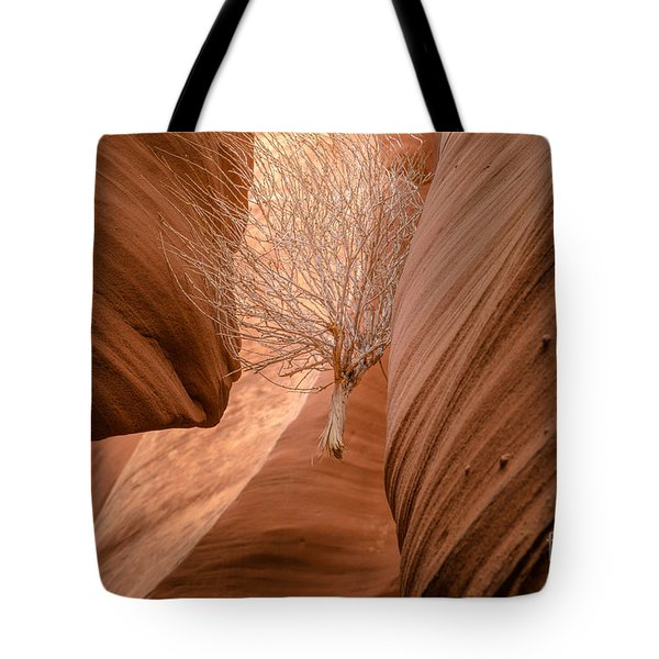 Tumbleweed In Owl Canyon Tote Bag