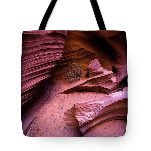 Tote Bag featuring the photograph Tumbleweed In The Canyon by Stephen Holst