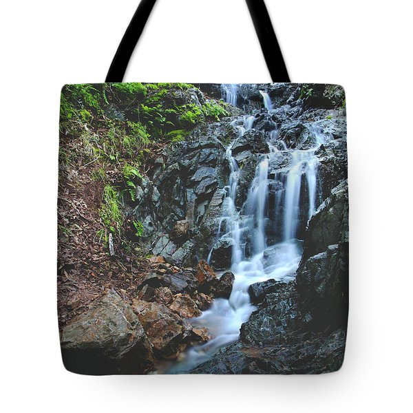 Tumbling Down Tote Bag by Laurie Search