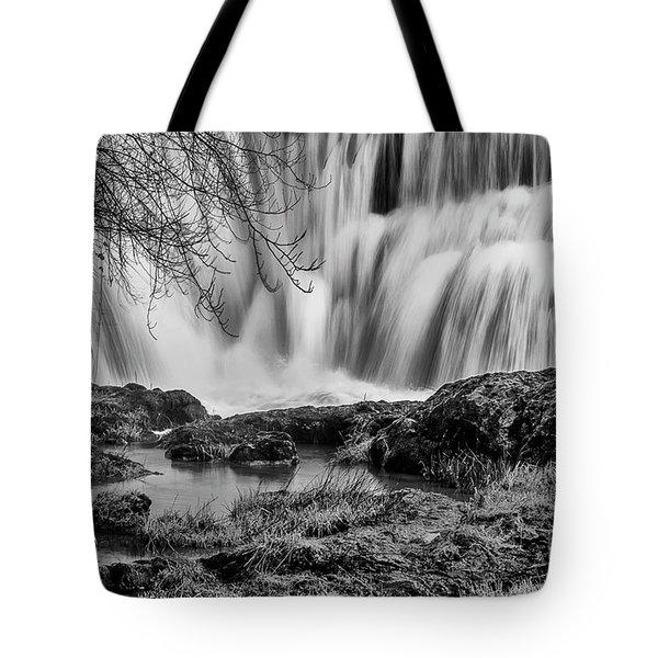Tumwater Falls Park Tote Bag
