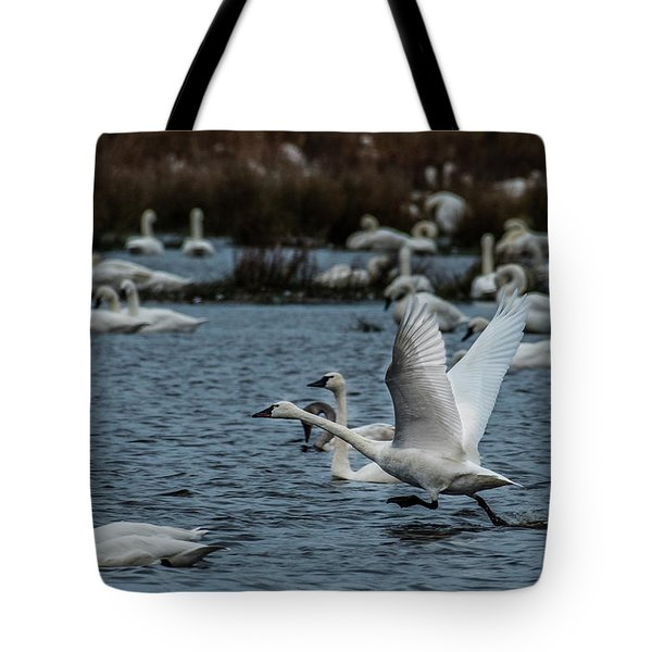 Tundra Swan And Liftoff Head Start Tote Bag