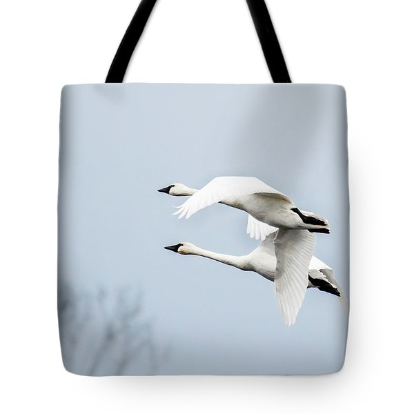Tundra Swan Lift-off Tote Bag
