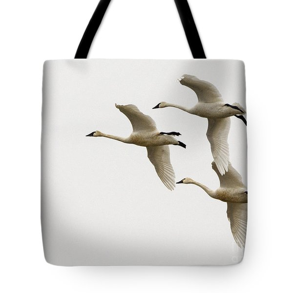 Tundra Swans In Flight 1 Tote Bag
