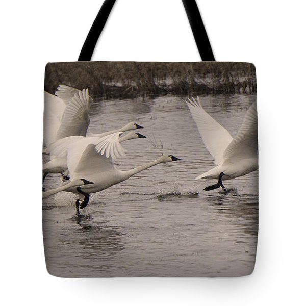 Tundra Swans Take Off Tote Bag