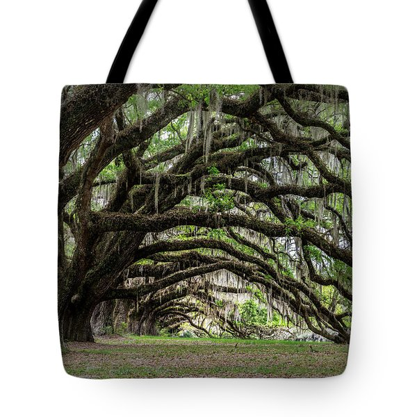 Tote Bag featuring the photograph Tunnel In Charleston by Jon Glaser
