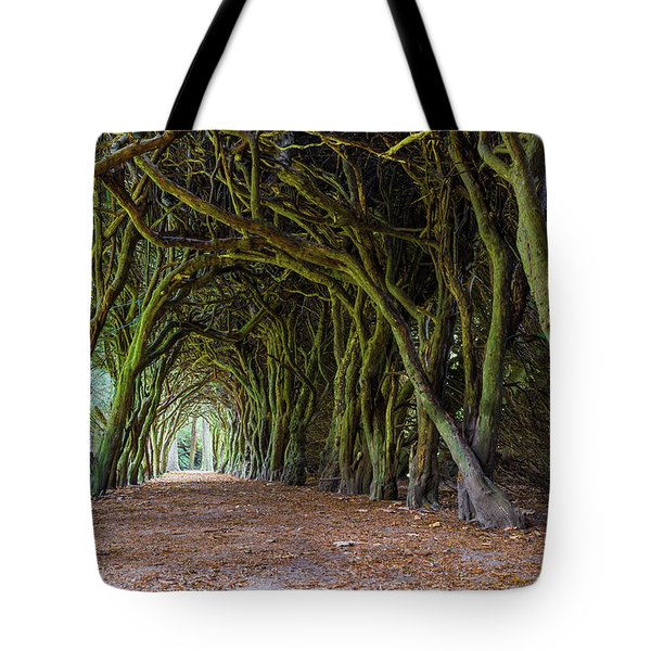 Tote Bag featuring the photograph Tunnel Of Intertwined Yew Trees by Semmick Photo