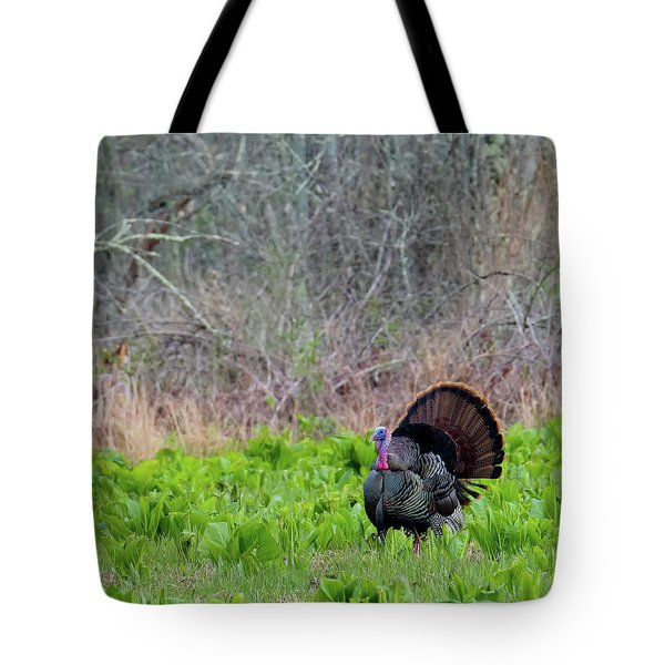 Tote Bag featuring the photograph Turkey And Cabbage Square by Bill Wakeley
