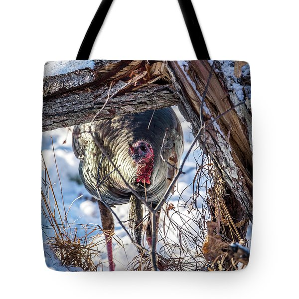 Tote Bag featuring the photograph Turkey In The Brush by Paul Freidlund