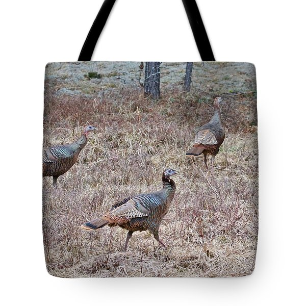 Tote Bag featuring the photograph Turkey Trio 1153 by Michael Peychich