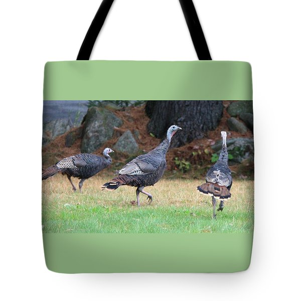Turkey Trio Tote Bag