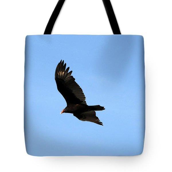 Turkey Vulture Tote Bag by David Lee Thompson