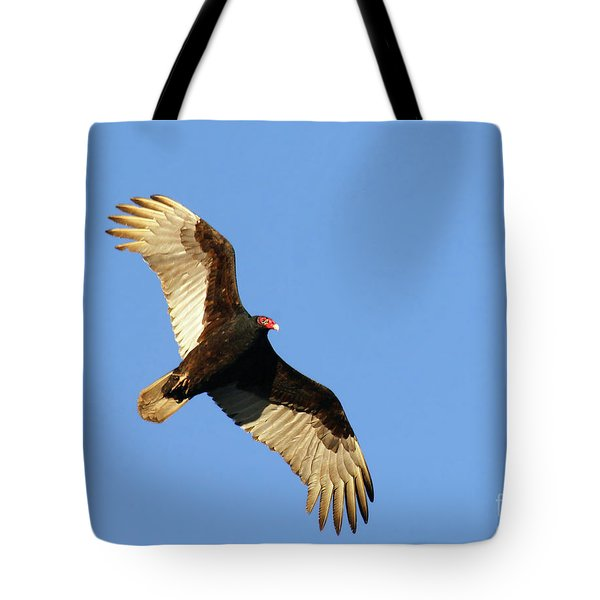 Tote Bag featuring the photograph Turkey Vulture by Debbie Stahre