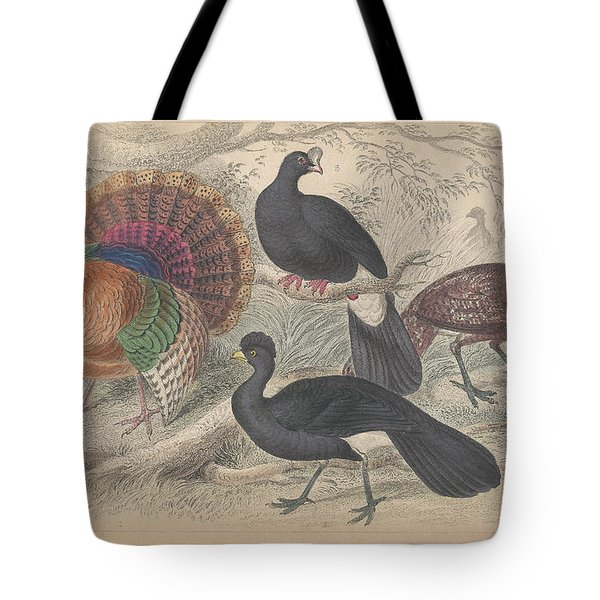 Turkeys Tote Bag by Dreyer Wildlife Print Collections