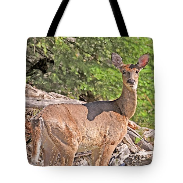 Tote Bag featuring the photograph Turn Coat by Sally Sperry