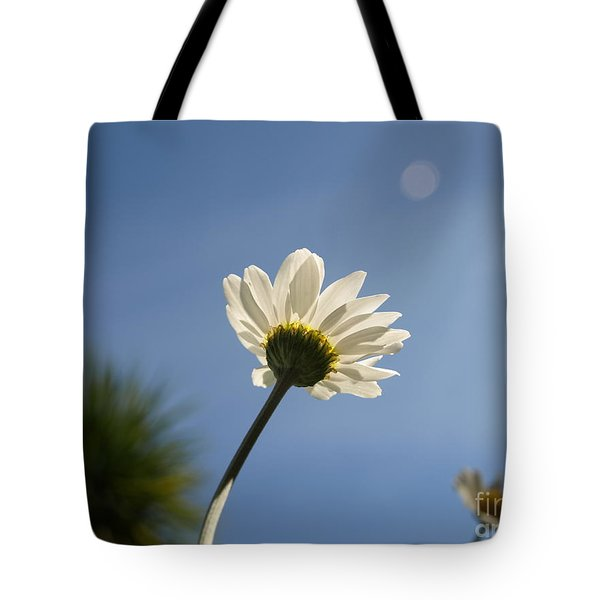 Turn To The Light Tote Bag by Richard Brookes