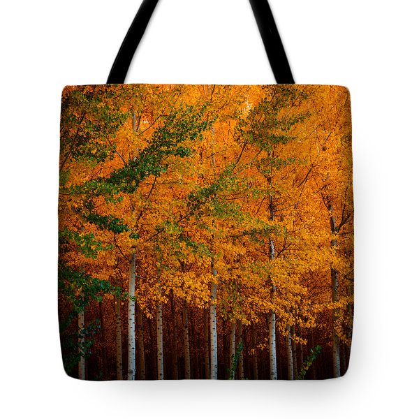 Turning Into Gold Tote Bag