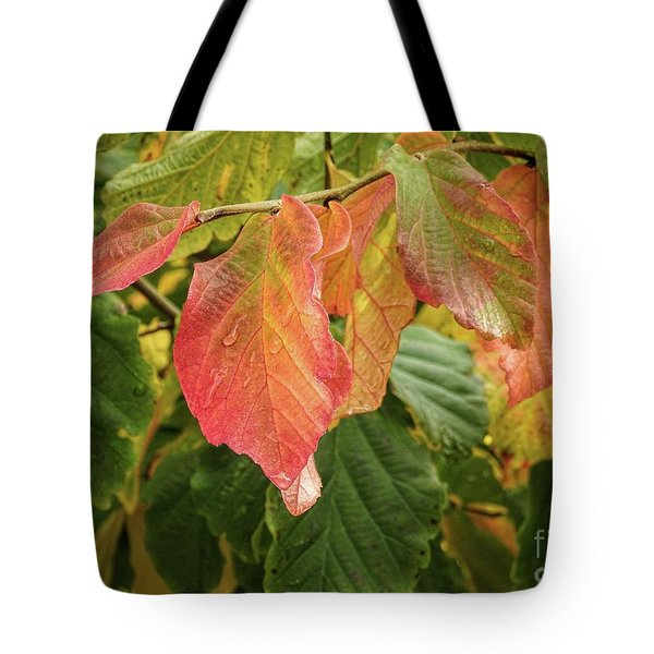 Tote Bag featuring the photograph Turning by Peggy Hughes