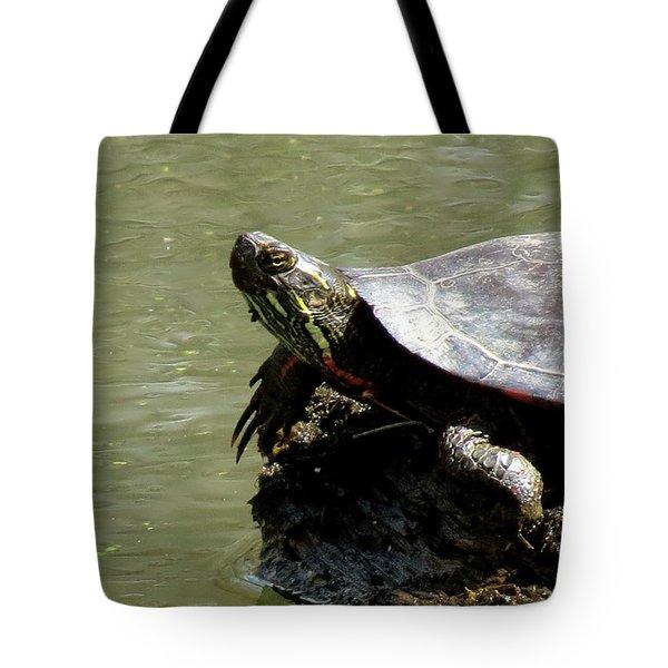 Turtle Bask Tote Bag