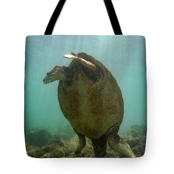 Turtle Handstand Tote Bag