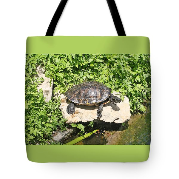 Turtle On A Rock Tote Bag