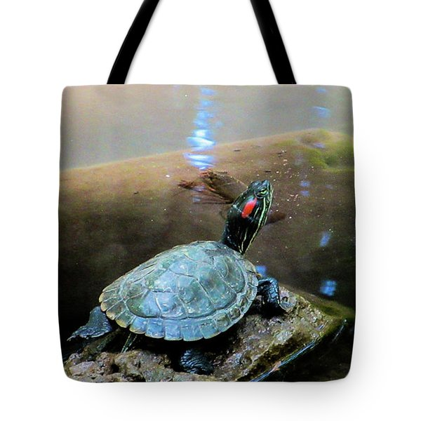 Turtle On Rock Tote Bag by Mark Barclay