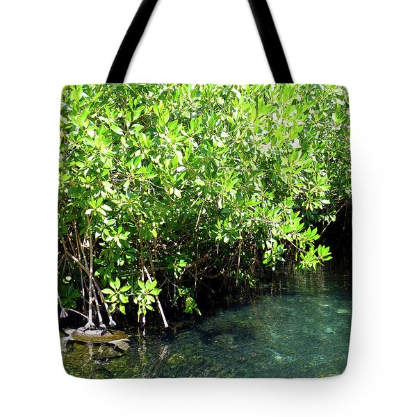 Tote Bag featuring the photograph Turtle Swim by Francesca Mackenney