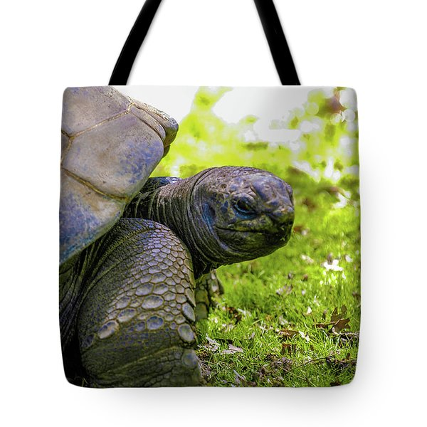 Tote Bag featuring the photograph Turtles Eye View by Louis Dallara