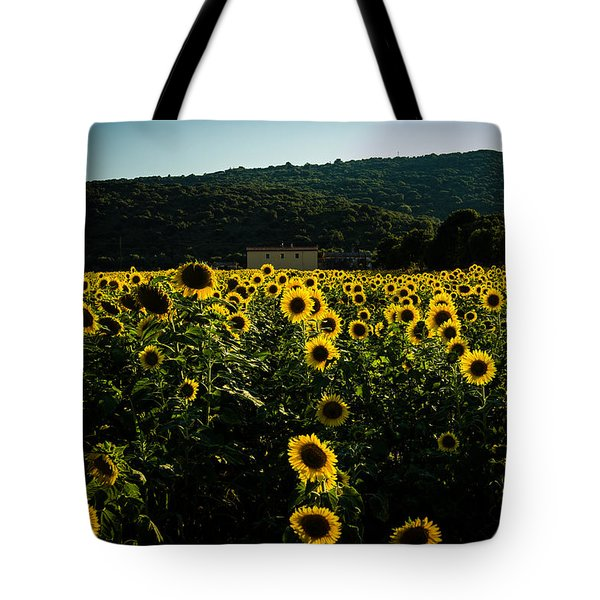 Tuscany - Sunflowers At Sunset Tote Bag
