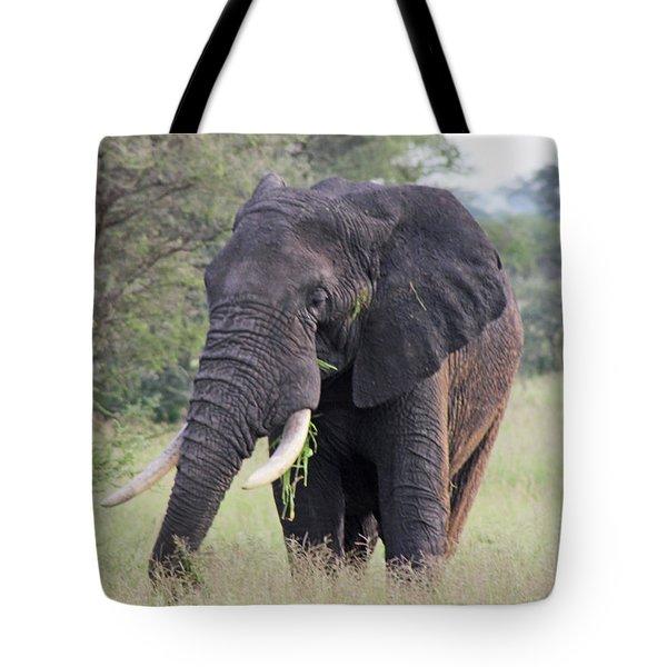 Tusker Tote Bag