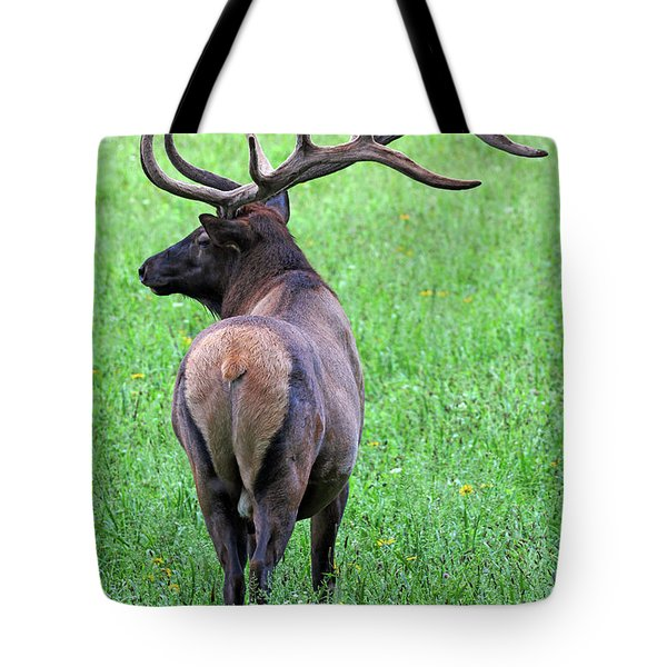 Twelve Point Stud Tote Bag