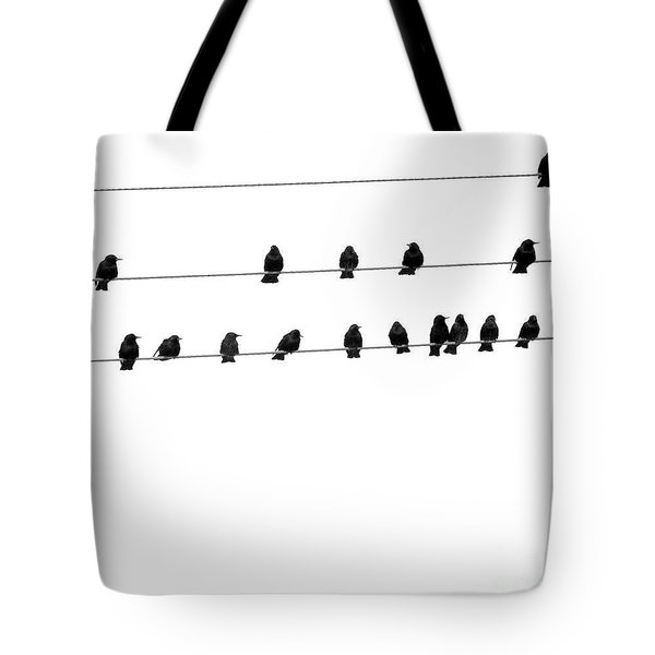 Twenty Blackbirds Tote Bag by Angie Rea