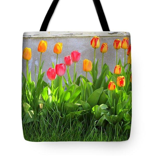 Twenty-five Tulips Tote Bag
