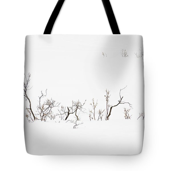 Twigs In Snow Tote Bag